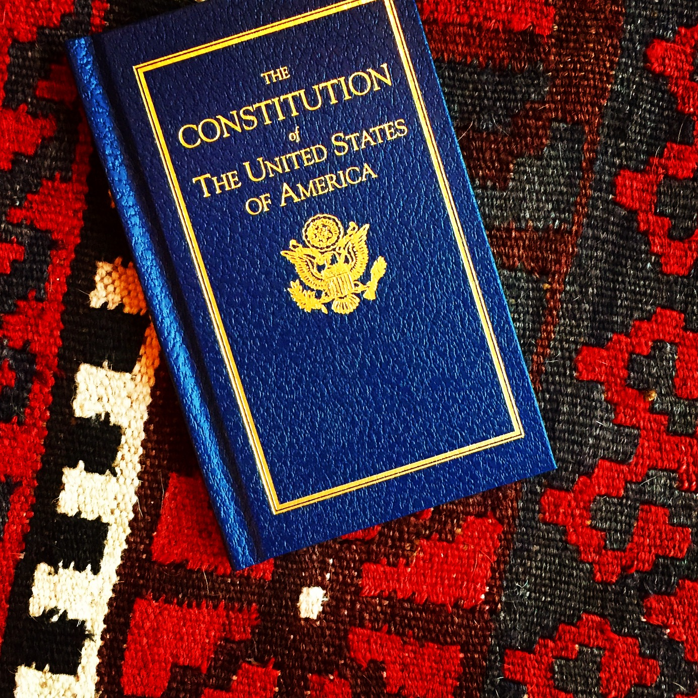 The Constitution, @themartinharo/Instagram