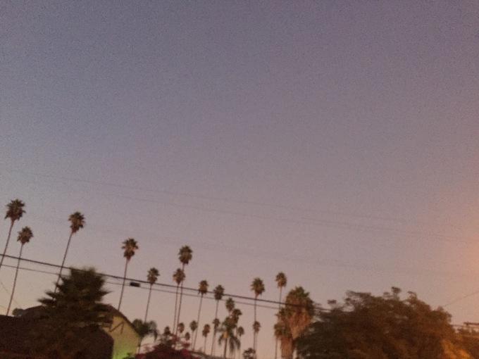 Venice Boulevard, Martin Haro